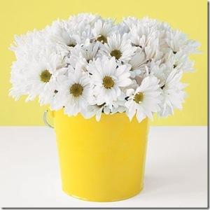 yellow bucket and daisies[5]